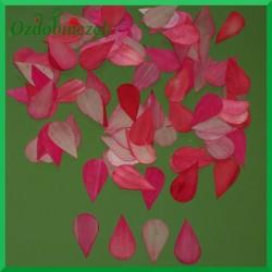 Płatki z drewna osikowego różowe 100szt