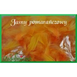 Pióra krótkie jasny pomarańczowy 10g