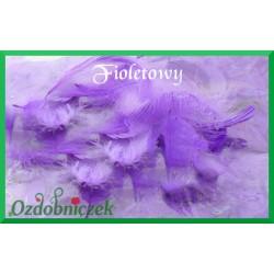 Pióra krótkie fioletowe 10g