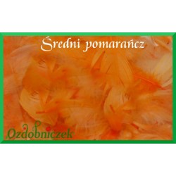 Pióra krótkie średni pomarańcz 10g