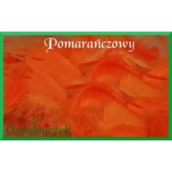 Pióra krótkie pomarańczowe 10g