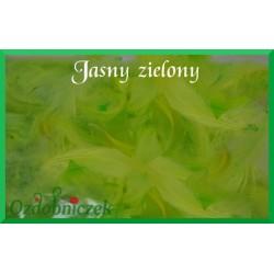 Pióra krótkie jasne zielone 10g