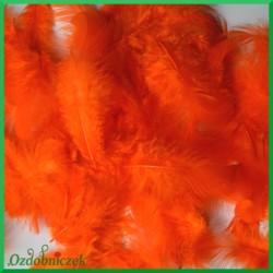 Piórka puszyste pomarańczowe 7g