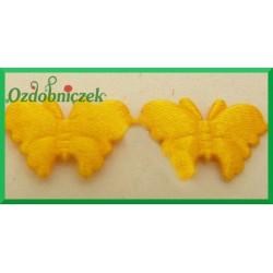 Aplikacje motylki żółte