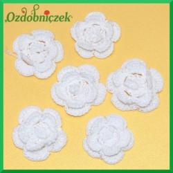 Koronka bawełniana kwiatek Koronka biała
